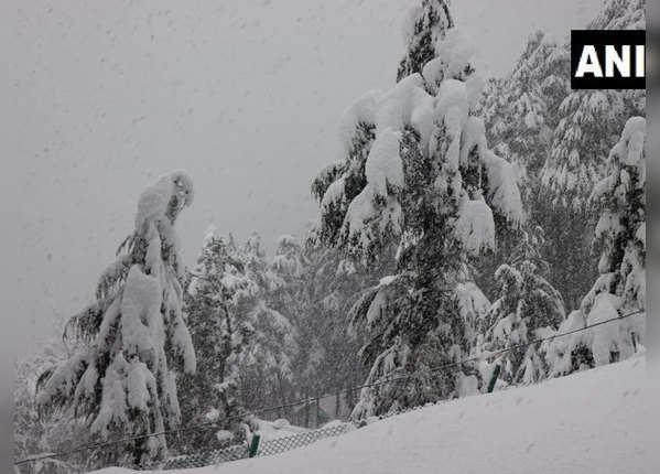 कश्मीर में गिरी बर्फ