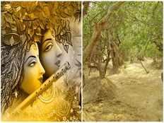 mystery of raas leela does lord krishna visit vrindavan every night