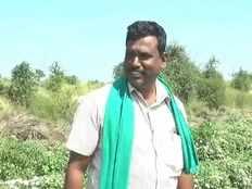 onions make debt ridden karnataka farmer crorepati