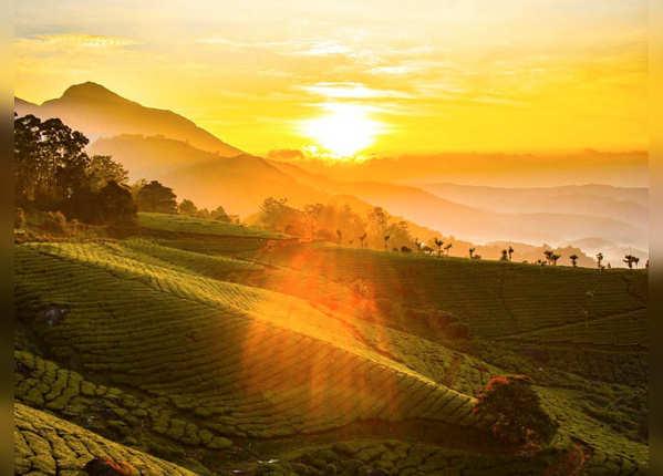 मुन्नार, दक्षिण का स्वर्ग