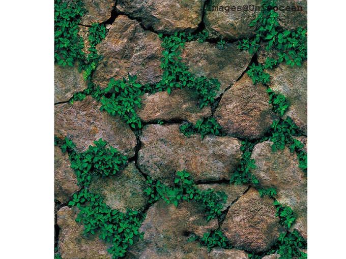 Modern Stone Green Plant Wallpaper, Wall Poster, Wall Sticker,