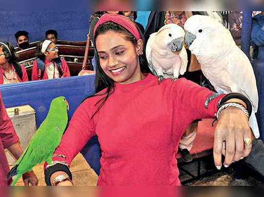 Mayor Firhad Hakim enjoyed Bird festival at Saltlake
