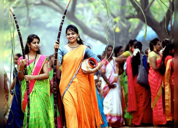 तमिलनाडु में पोंगल सेलिब्रेशन