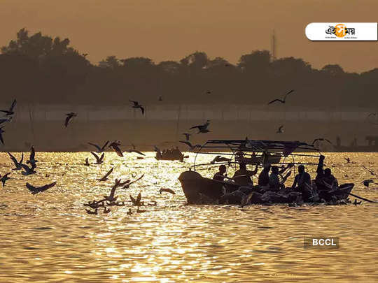 Swimming in The Ganges to protest against CAA and Narendra Modi