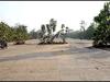 झारखंड ने हाथियों के कॉरिडोर के लिए रोका एयरपोर्ट प्रॉजेक्ट