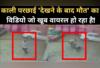 काली परछाई 'देखने के बाद मौत' का विडियो, जो खूब वायरल हो रहा है!