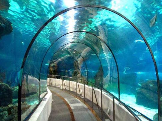 kolkata-under-water