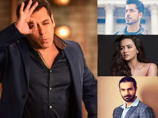 bigg boss 13 salman khan helped these contestants in their career and gave them a break in bollywood