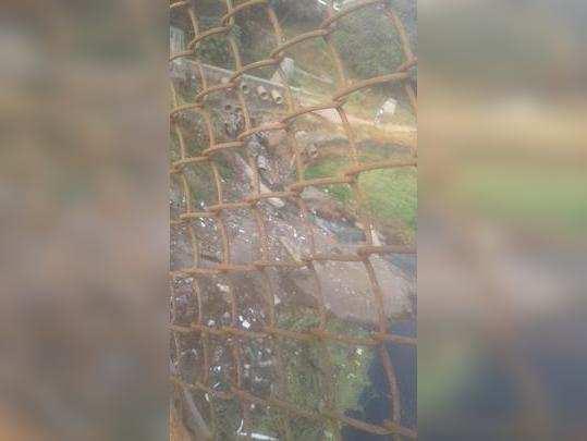 Godavari river water pollution