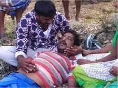 farmer kills by falling from palm tree near krishnagiri