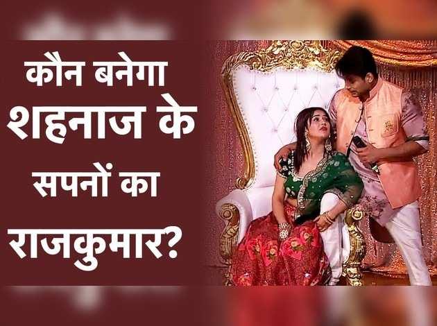 कौन बनेगा शहनाज के सपनों का राजकुमार?