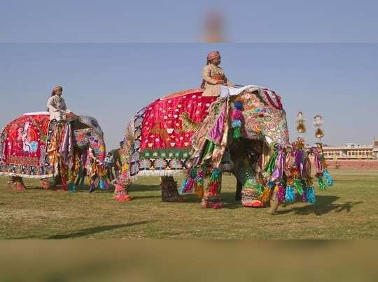 jaipur elephant fest