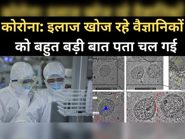 कोरोना वायरस: इलाज खोजने की दिशा में वैज्ञानिकों को बड़ी सफलता