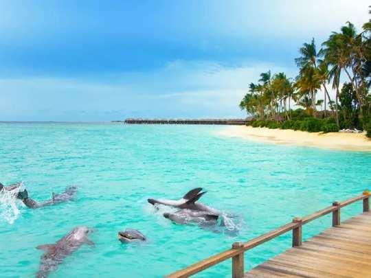 maldives corona