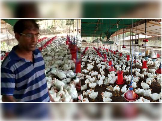kannur poultry