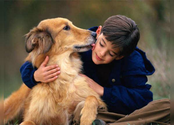 पालतू जानवरों से कोरोना हो सकता है