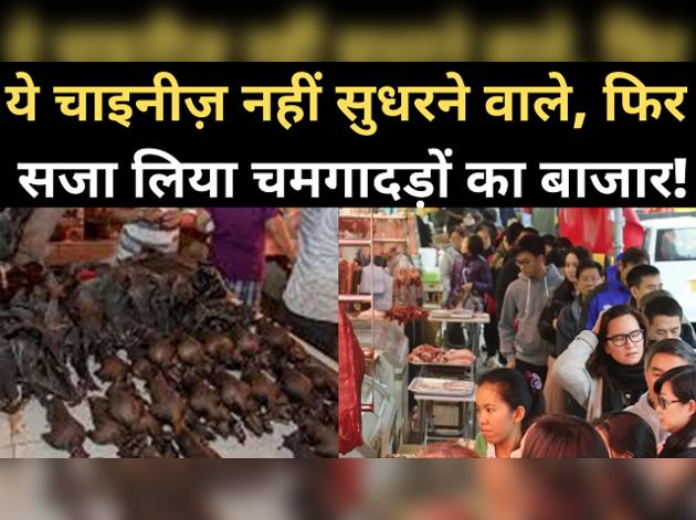 कोरोना का असर कम होते ही चीन में फिर सजा चमगादड़ों का बाजार