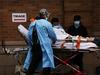 US: कोरोना वैक्सिन के चूहे पर दिखे अच्छे रिजल्ट, अब इंसानों पर होगा टेस्ट?