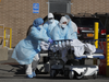 अमेरिका में कोरोना वायरस से चार भारतीयों की मौत, सभी केरल से