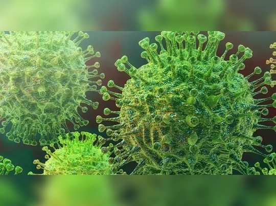 Coronavirus Photo 2