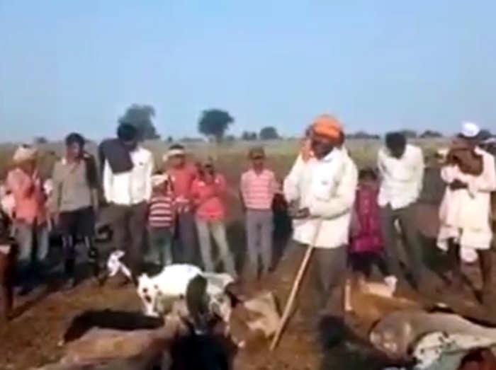 buldhana-video