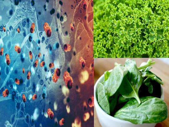 know what is leukemia and how to prevent leukemia cancer with foods