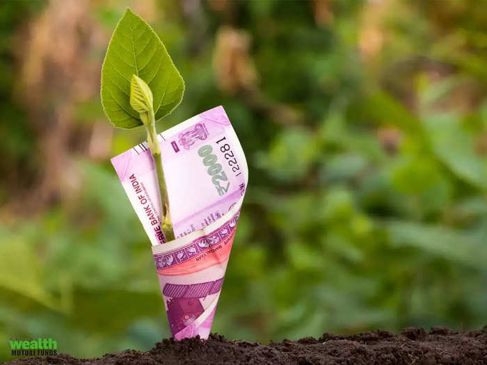 got best return in these investment schemes without any risk