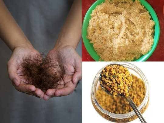 homemade fenugreek powder olive oil and curd hair pack to stop hair fall