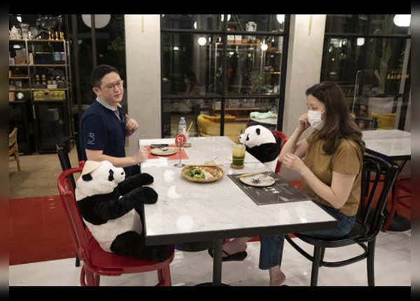 थाइलैंड में साथ बैठा पांडा