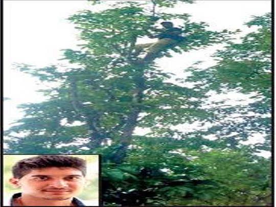 पेड़ पर चढ़कर क्लास अटेंड करता श्रीराम