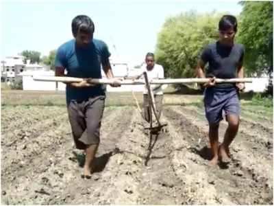 लॉकडाउन की दर्दनाक तस्वीरः किसान ने बेटों को बैल बनाकर जोता खेत