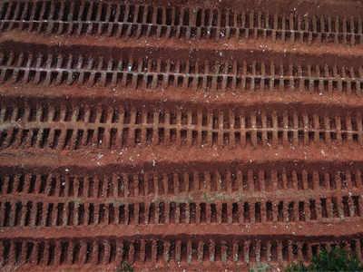ब्राजील में खोदी गईं कब्रें