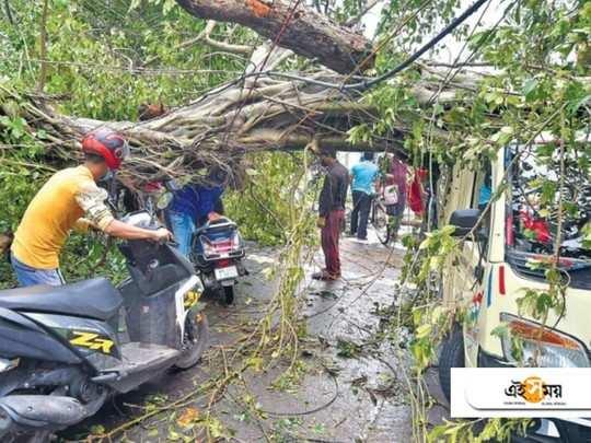 Amphan destroyed greenery in kolkata