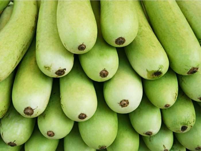 how lauki (bottle gourd) can help you lose weight know how to eat in proper way
