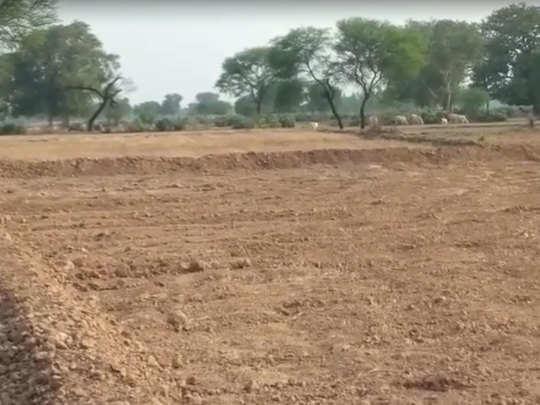 गांव में 300 बीघा खेत में बनाई मेड़