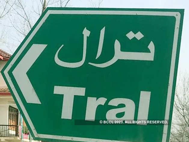 कश्मीर से 45 किलोमीटर दूर है त्राल