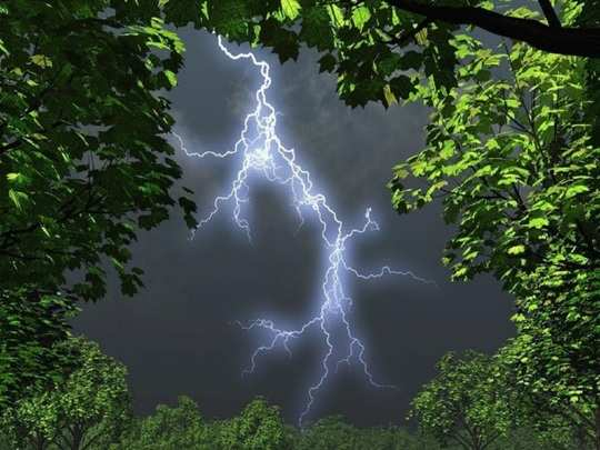 lightning strikes at murshidabad, 6 died