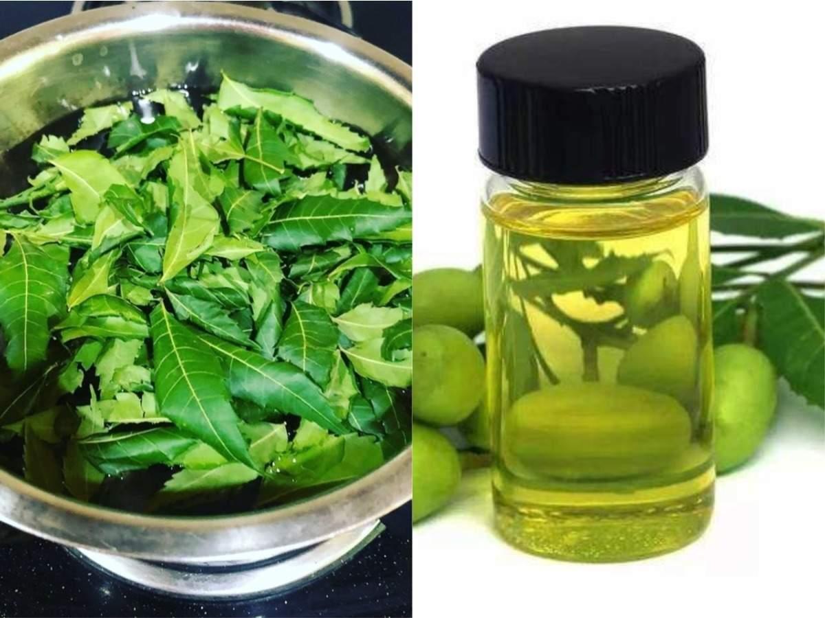 neem oil lightens skin: Neem Skin Care: गुणों का खजाना है नीम का तेल, जानें त्वचा पर लगाने का फायदा - how to use neem oil for the skin pigmentation acne and