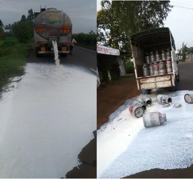 राज्यात दूध आंदोलनाचा भडका;  हजारो लिटर दूध रस्त्यांवर फेकले
