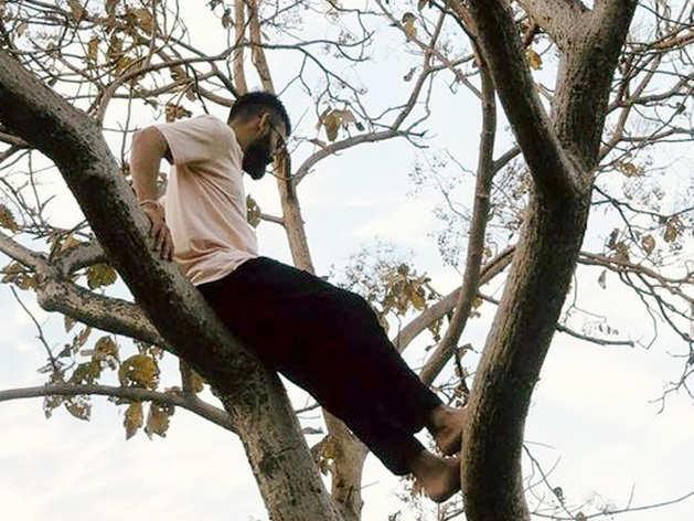 पेड़ पर बैठकर 'चिल' करते नजर आए विराट कोहली, शेयर की पुरानी तस्वीर