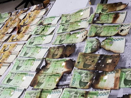 south koreans put money in ovens and washing machine to rid it of coronavirus