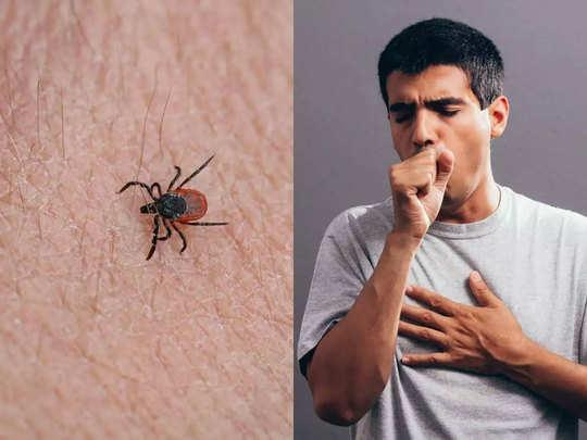 tick-born-virus-1