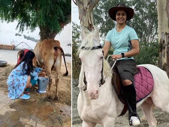 haryana chori manu bhaker desi style her milking cow video going viral