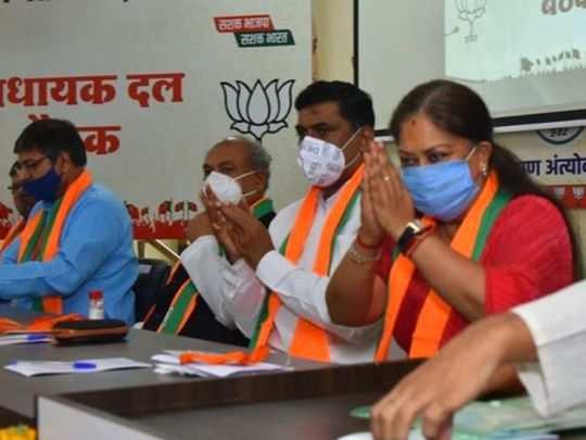 rajasthan news image (28)