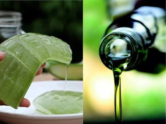 natural beauty care tips how to make aloe vera oil at home in marathi