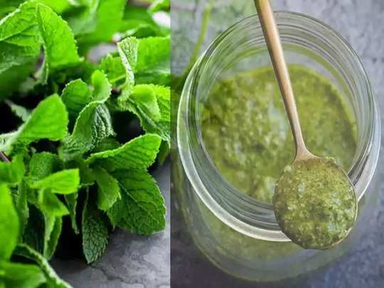 health benefits of eating pudina leaves or mint in marathi