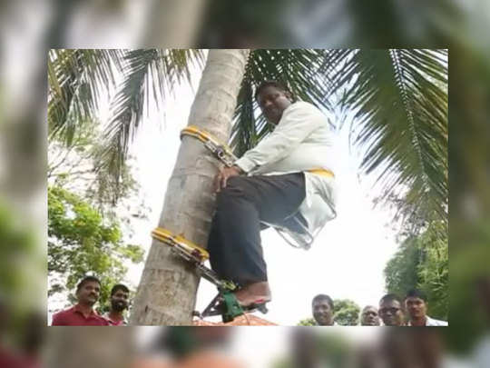 Minister climbs tree to address people