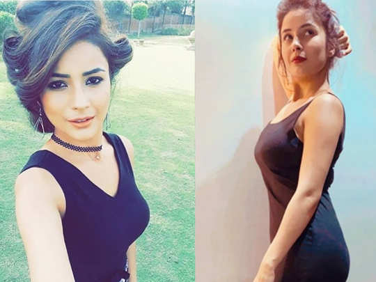 shehnaaz gill latest photos in ultra slim look make fans crazy and viral on internet