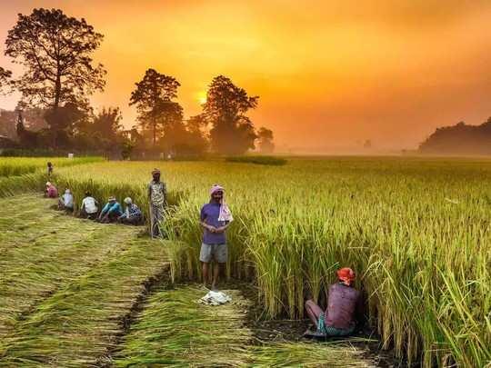 कृषी विधेयकांमुळे शेतकरी आत्मनिर्भर