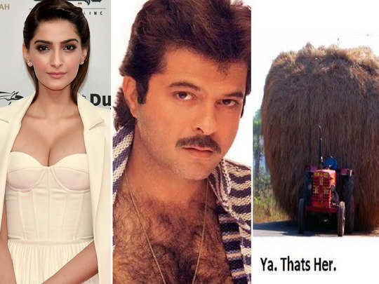 sonam kapoor elie saab feather dress was compared to anil kapoor chest hair and even fodder